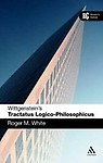 Wittgenstein's Tractatus Logico- Philosophicus: A Reader's Guide (Paperback)